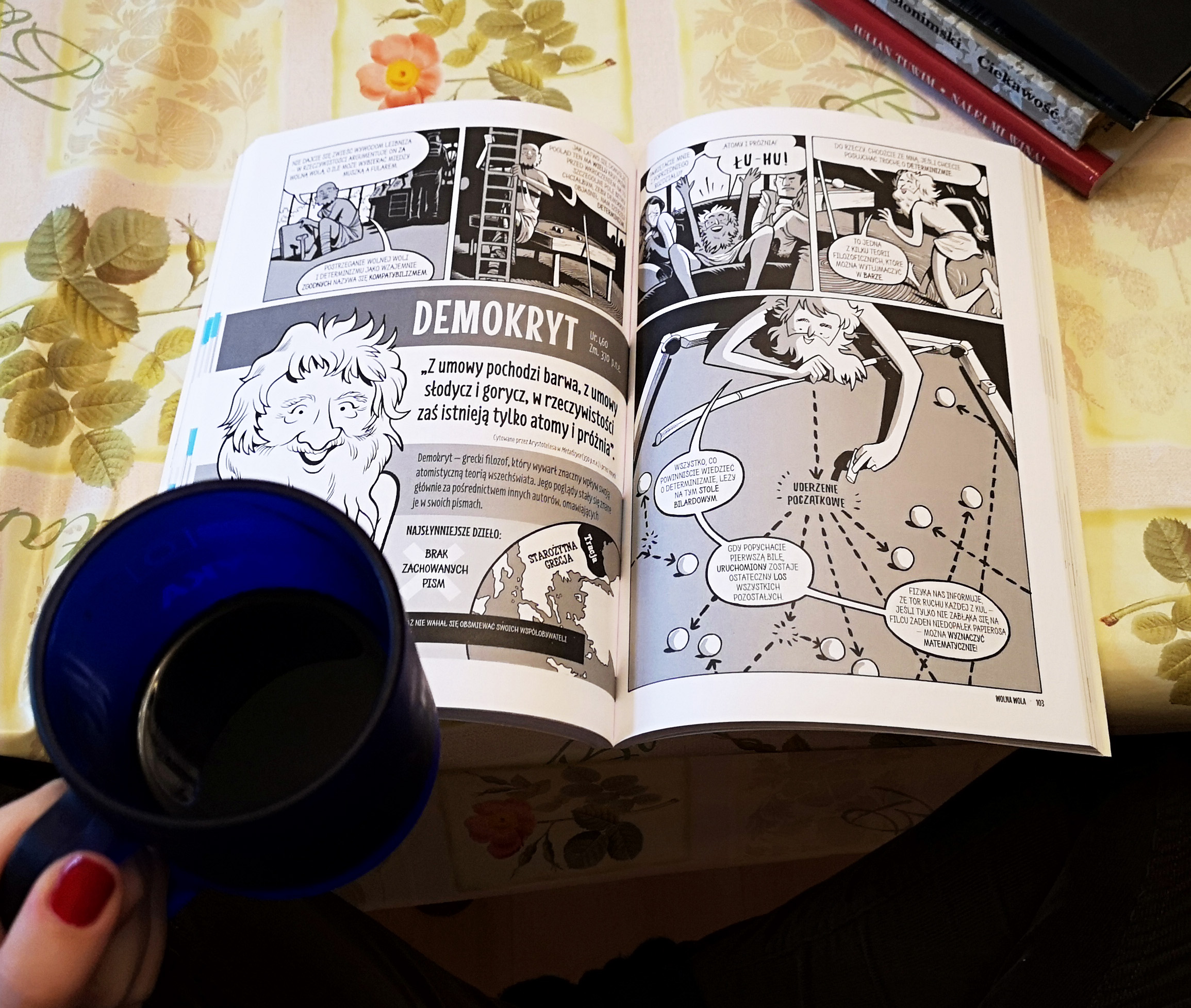 Komiksowe wprowadzenie do filozofii